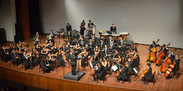 Beethoven y Brahms sonarán con la Orquesta Sinfónica de Caldas