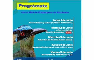 Ecoparques virtuales